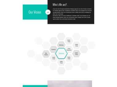 Branding website complete packge