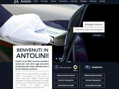Digital Marketing Specialist @ www.antolini.biz