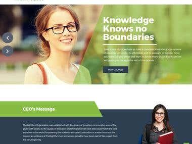website design and corporate identity (logo design)