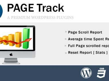 Real Time Page Tracker ( Wordpress plugin )