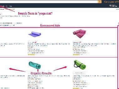 Amazon PPC expert.