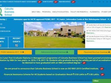 Business School Website Design and development