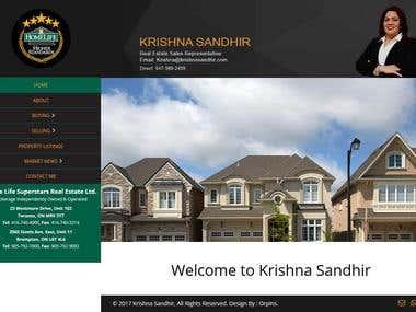 Home Lite Website development