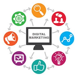 Social Media Expart & Web Designer.