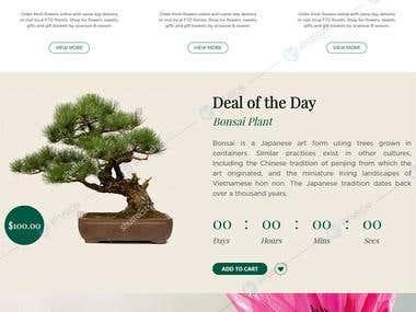 Florist Online Store | Magento