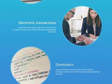 PaySky website home page concept