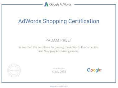 Google AdWords Shopping Certified