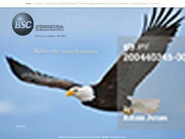 BSC International