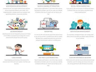 SpiderWeb Solutions Website