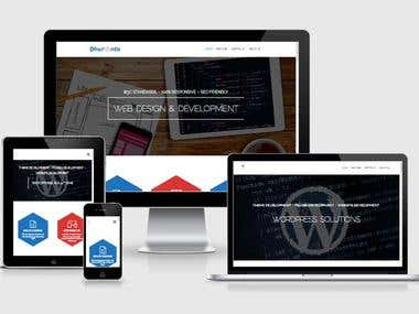IT Website Development