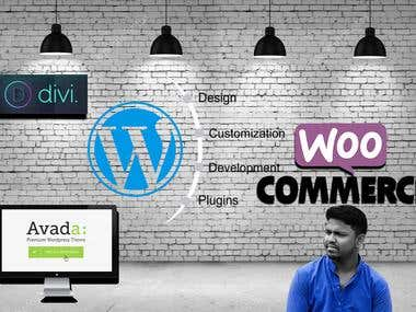 I Will WordPress Any Premium Theme Customization