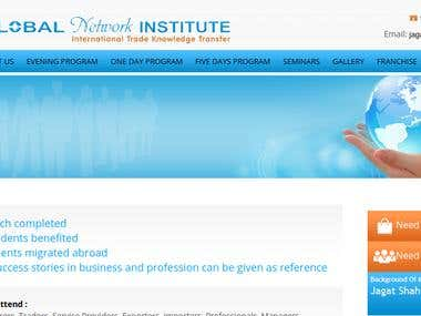 Global Network Institute