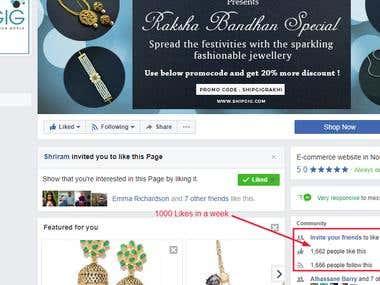 Social Media Promotion (Facebook Likes)