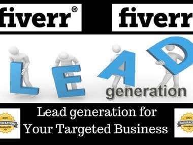 I Will Lead Generation For Your Targeted Business