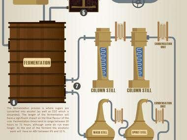 Rum production infographic.