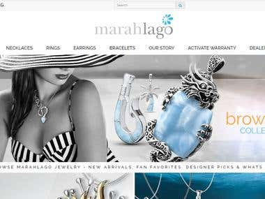 Web Designing and Development - Marahlago