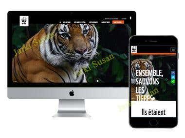 Responsive website - 3200 Tigres