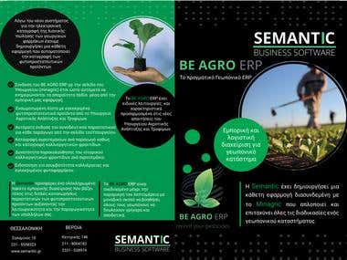 Business brochure for Semantic Business Softwares