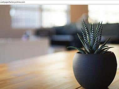 Find Information from Websites - Wallpaper
