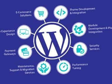 I-Will-Design-Professional-Wordpress-Website
