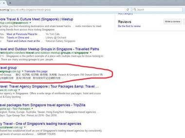 Singapore Travel Group - Ranking in Google Singapore top