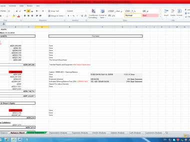 Balance sheet for MAFS Campany
