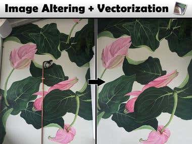Image Altering / Vectorization