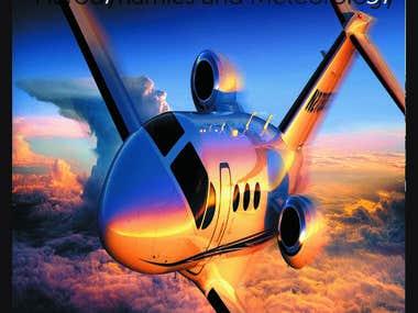 pilot flyer