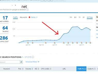 Served a client with SEO and raised the traffic.