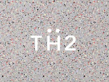 TH2 Logo & Branding Design