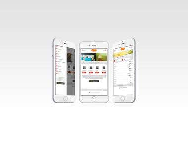 Web and Mobile Design/Development