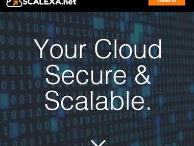 Branding & Logo Design for Scalexa.NET