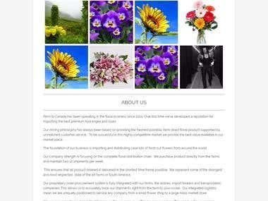 Integrate Instagram Images in Wordpress