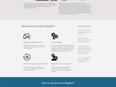 Ecommerce Company Website.