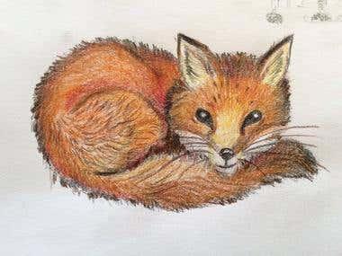 Children's book Animal Characters