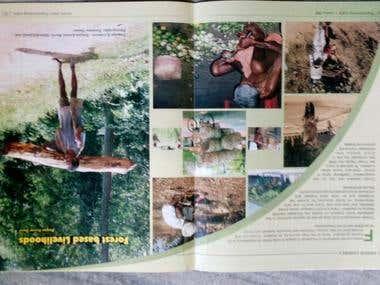 """""""Forest Based Livelihoods"""""""