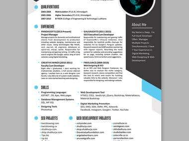 Professional Resume Sample