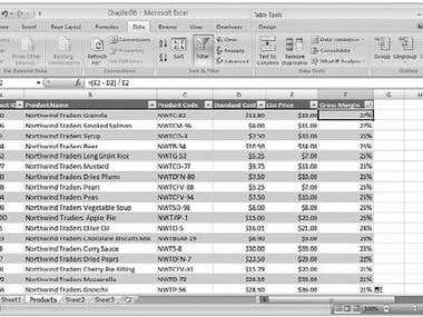 Xcel Data entry