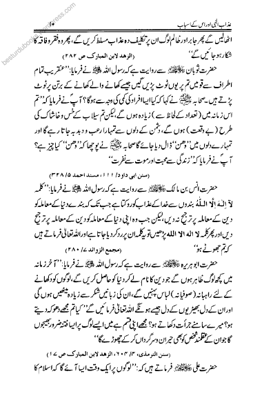 data entry. copy typing web search,urdu english translation