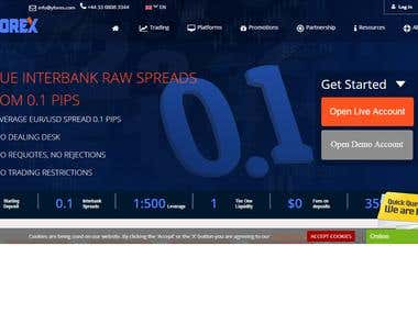 Website For Forex Business