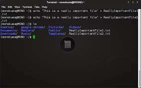 Shell Script Creation