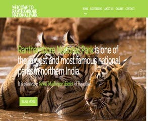 Jungle Safari Website Design