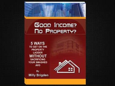Good Income? No property?