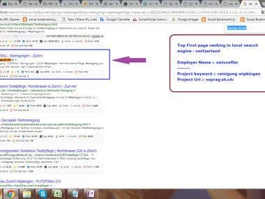 Top First page ranking in local search engine - Switzerland