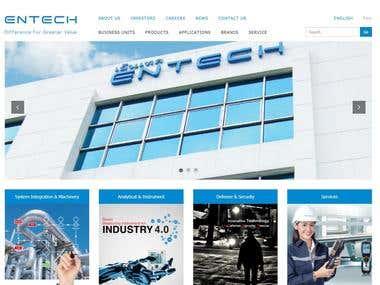 Entech Theme 2017 Development