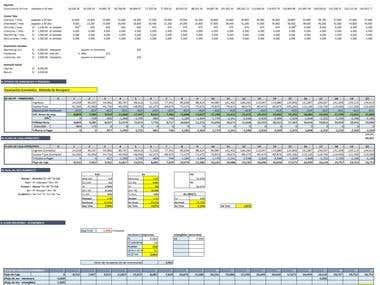 Projection of economic feasibility of a project (MS Excel)