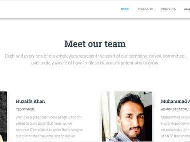 MITZ OFFICIAL IT BASED COMPANY WEBSITE
