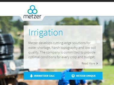 WordPress MetZer