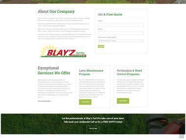 blayzturfprolawncare.com