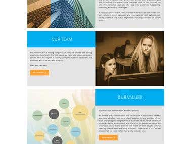 website design an Development with wordpress cms.